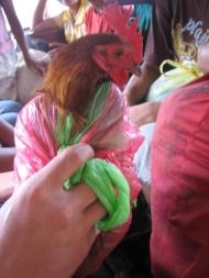 Huhn in der Tüte, Philippinen 2008